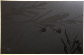 Olivier Noir Noir. <BR><I>Olivier Black Black.