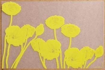 Pavot Translucide Jaune. <BR><I>Pavot Clear Yellow.