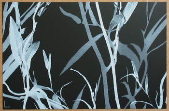 Feuillage Noir Blanc. <BR><I>Feuillage Black White.</I>